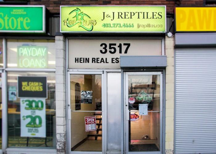 j amp j reptiles calgary business story