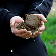 5 common soil problems and how to fix them