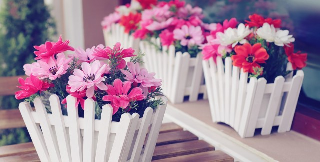 Simple flower care tips that add colour to your home