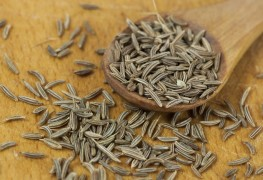 9 facts about aromatic caraway
