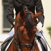 What do I need to wear to my riding lessons?
