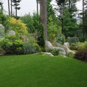 How to choose the right fertilizer for a lusher lawn
