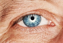 7 tactics that help prevent macular degeneration