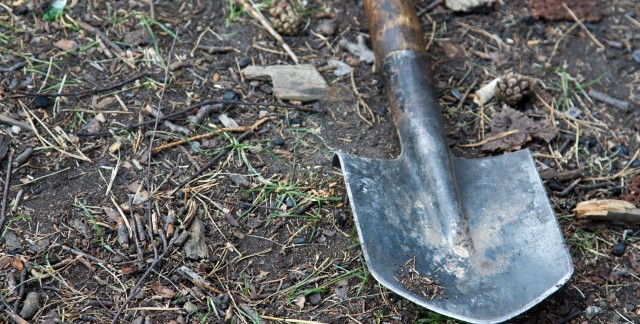 How to prepare a hole for trees and shrubs
