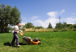 6 essential tips for lawn mower safety and maintenance
