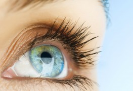 The important connection between nutrition and eye-health