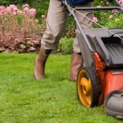 Easy tricks to maintain a beautiful lawn