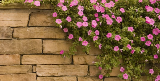 7 helpful pointers for building a garden wall