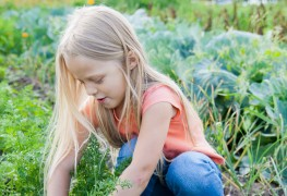 7 ways to get kids out in the garden