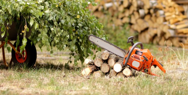 5 maintenance tips for garden power tools