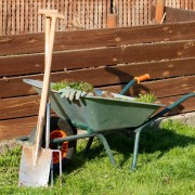 8 ideas for combating pollution with your garden