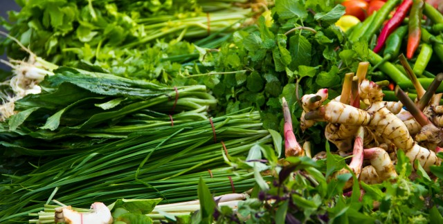 Your complete guide to homegrown herbs: L to M