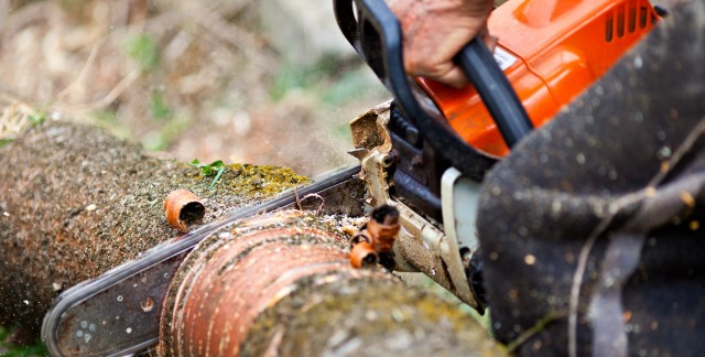Handy tips for maintaining chainsaws and chippers