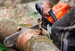 The safe way to cut wood with a chainsaw