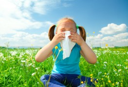 5 important facts allergy sufferers should know