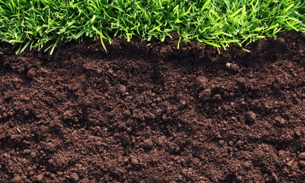 Essential gardening tip know your soil type smart tips for Garden soil types