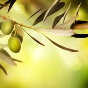 5 ways to treat candida overgrowth