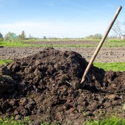 5 tips for making your own compost