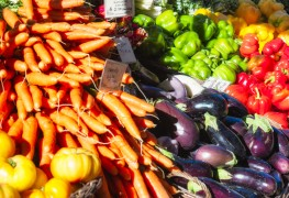 Top Edmonton Farmers' Markets
