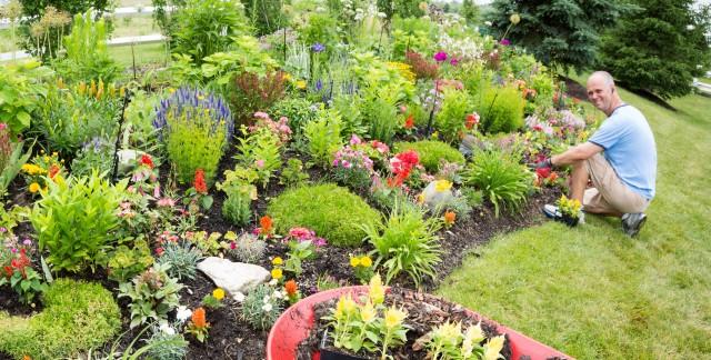 Expert gardening tips