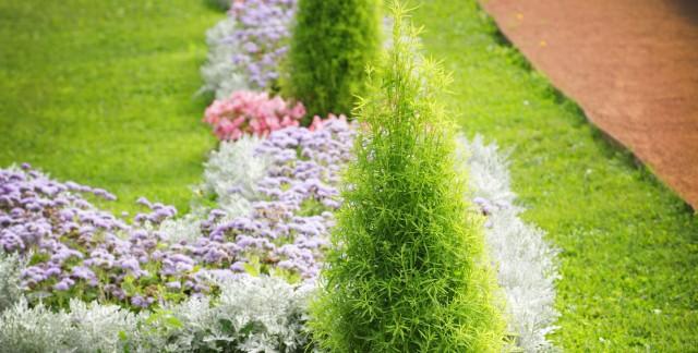 Expert landscaping tips