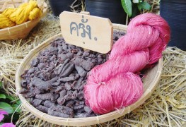 The basics of using natural dyes and preparing your fabrics