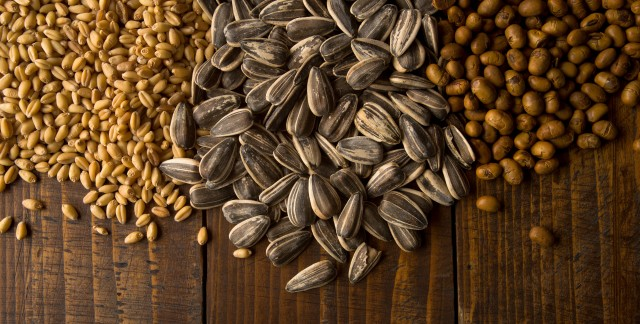 Delicious substitutes for nut allergy sufferers