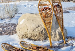 The ultimate guide to buying snowshoes