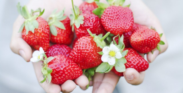 10 recommended organic foods