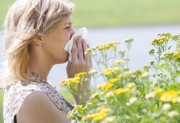 Why aren't your allergies meds working any more?