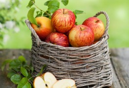 9 popular apple varieties for eating and baking