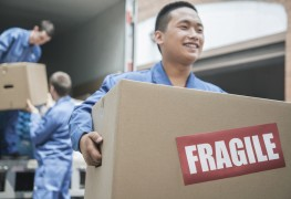 Specialized moving companies: experts who can move almost anything
