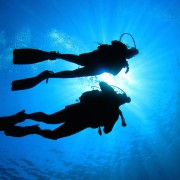Happy bubbles! Is scuba diving for you?
