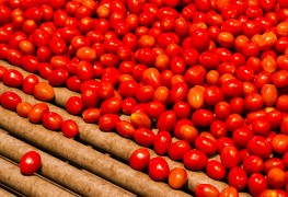 7 anti-inflammation foods for arthritics