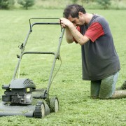 Top cures for common lawn problems