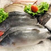 Gone fishin': how to prepare fish like a pro