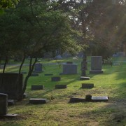 Choosing the greenest option: cremation or green burial