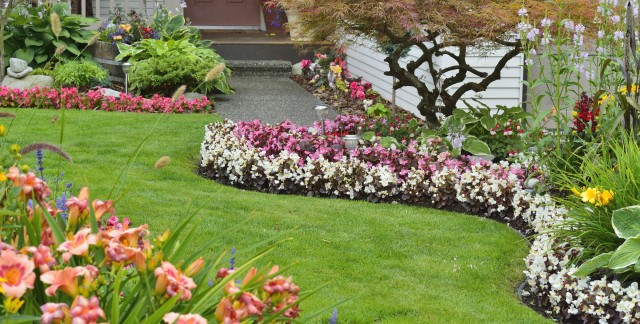 How to grow a healthy garden for less