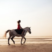 Tips on finding a horseback riding holiday that is right for you