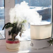 How and when to clean your humidifier