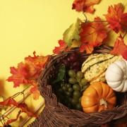 5 ideas for putting together a Thanksgiving flower arrangement