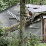 Are you insured for natural disasters?