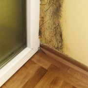 The key to a better home: detect and eliminate mould in walls