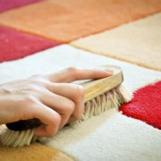 How to clean cat urine off the carpet