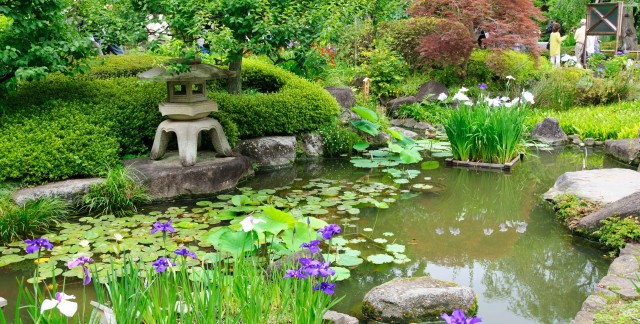 9 guidelines for creating a japanese garden smart tips for Design my own garden