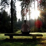 Is meditation more effective than medication for anxiety?