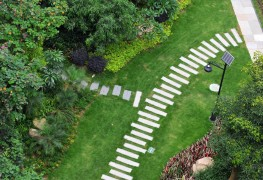 Install a stone path for all your gardening needs