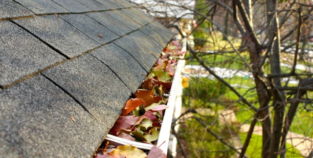Buy gutters and gutter caps that will last