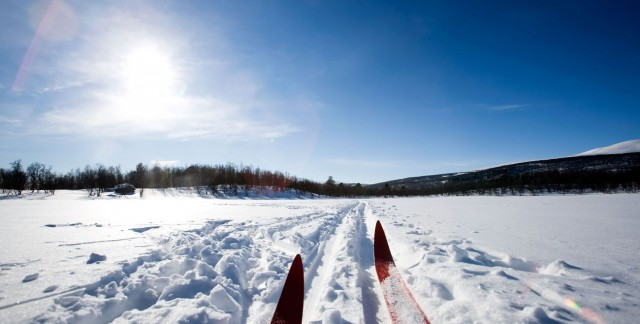 Expert advice to help you find the perfect cross-country skis