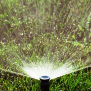Replace a broken sprinkler head
